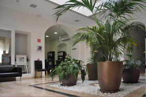 Hotel Convento Tarifa (7 of 48)