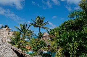 Ramon's Village Resort (17 of 73)
