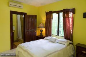 Belize Toucan Nest Hotel