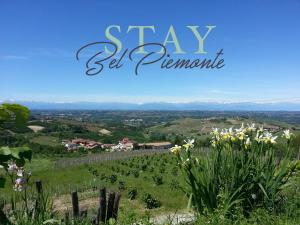 Affittacamere Stay Bel Piemonte - Apartment - Dogliani