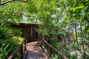 Big Tree House Lodge - Knysna