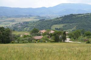 Agriturismo Terra Selvatica - Casacce