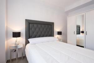 MalagaSuite Center Malaga, Appartamenti  Malaga - big - 22
