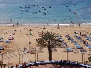 Sol Y Paz, Las Palmas de Gran Canaria  - Gran Canaria