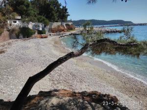 obrázek - Family house by the beach