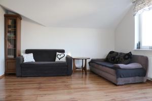 Apartament Pod Platanami