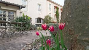 Accommodation in Rochemaure
