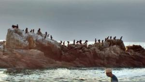 A Pasos de la Playa, Apartmanok  Papudo - big - 31