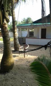 Anil's Beach Guest - Akuraladuwa