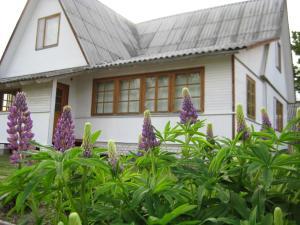 Дом для отдыха в поселке Слобода, Слобода