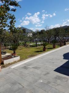 Casa Aristide, Bed & Breakfasts  Sant'Agnello - big - 14