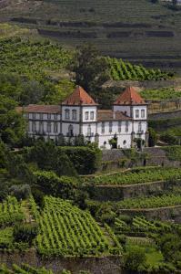Casa das Torres de Oliveira, Affittacamere  Mesão Frio - big - 18