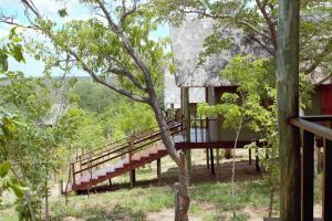 Lion Roars Lodge, Chaty  Lesoma - big - 12
