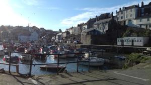 Holly Cottage Vintage B&B, Bed and Breakfasts  Mevagissey - big - 36