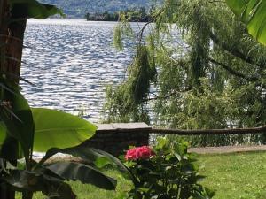 Apartments Posta al Lago - Ronco sopra Ascona