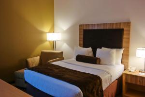 Best Western Plus Mesa, Hotels  Mesa - big - 15