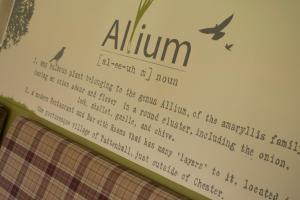 Allium by Mark Ellis (8 of 42)