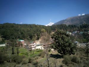 House in Dharamshala near Dalai's Abode, Проживание в семье  Дармсала - big - 13