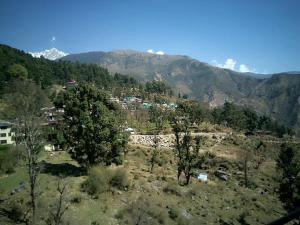 House in Dharamshala near Dalai's Abode, Проживание в семье  Дармсала - big - 11