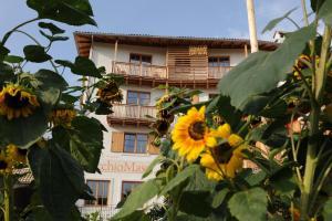 Relais Vecchio Maso - Hotel - Trento