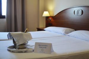 Hotel Reyes Ziries - Albolote