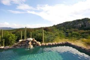 Sasa Safari Camp, Chaty v prírode  Outjo - big - 53