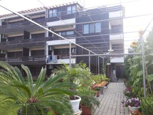 Apartments in Sunny Hill 3 Guest House
