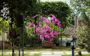 Spring Garden Homestay