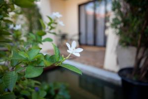 Lotusland Resort, Hotely  Jomtien pláž - big - 42