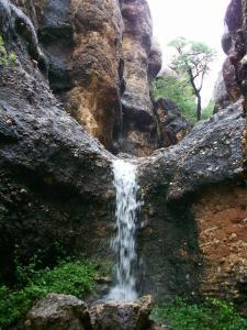 Sasa Safari Camp, Chaty v prírode  Outjo - big - 32