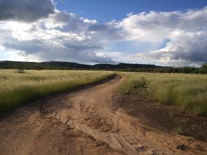 Sasa Safari Camp, Chaty v prírode  Outjo - big - 28