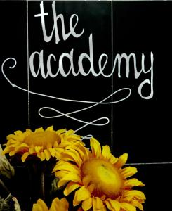 Hostels e Albergues - The Academy