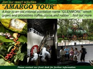 Margo Utomo Hill View Resort, Комплексы для отдыха с коттеджами/бунгало  Kalibaru - big - 17