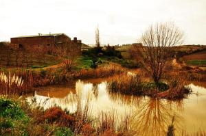 Sanctum Cottages, Vidéki vendégházak  Grabouw - big - 10