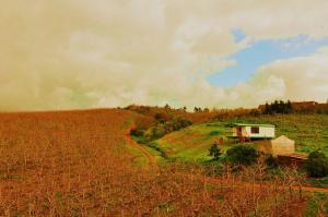 Sanctum Cottages, Farmy  Grabouw - big - 1