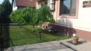 Vila As Lux, Penzióny  Zrenjanin - big - 62