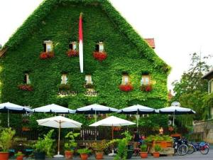 Hotel-Gasthof-Schiff - Erlach