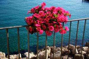 Villa Lieta, Bed and breakfasts  Ischia - big - 153