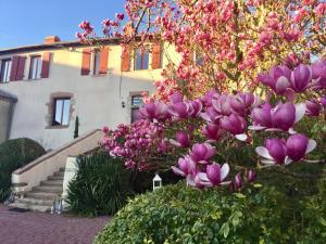 Le Jardin Suspendu B&B, Отели типа «постель и завтрак»  Montfaucon - big - 6