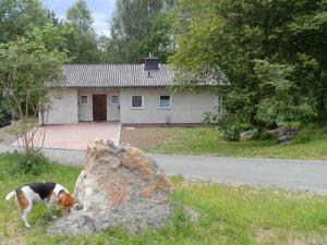 Holiday home Am Fichtelsee 2 - Fichtelberg