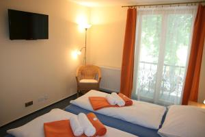Hotel Praha Potštejn, Hotely  Potštejn - big - 2