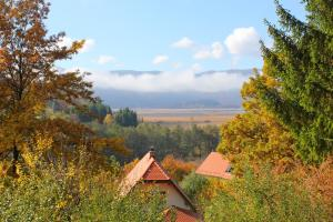 Accommodation in Cerknica