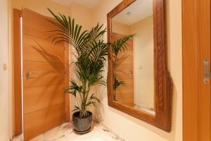 Soho Lounge - Space Maison Apartments, Apartmány  Sevilla - big - 25