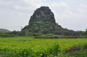 Tang Wu 99Hao Ke Zhan, Country houses  Yingde - big - 8