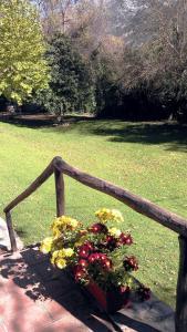 Cabañas Jimera de Líbar, Vidiecke domy  Jimera de Líbar - big - 63