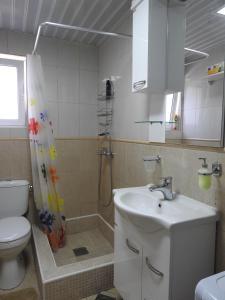 Apartment Lion, Ferienwohnungen  Petrovac na Moru - big - 4