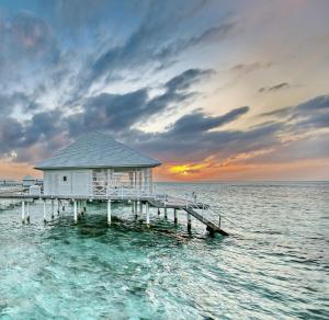 Diamonds Thudufushi Beach & Water Villas (34 of 100)