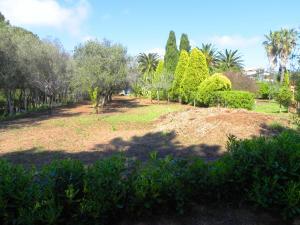Villa Eleonora, Villas  Tropea - big - 76