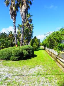 Villa Eleonora, Vily  Tropea - big - 80