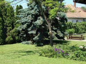 Gyöngyvirág Vendégház, Ferienwohnungen  Balatonboglár - big - 15
